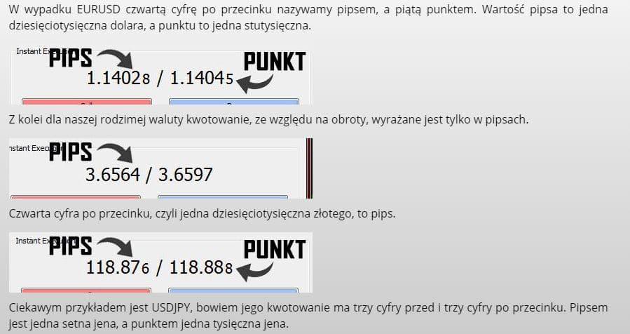 Pips Punkt