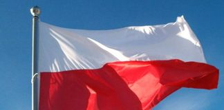polscy brokerzy forex