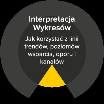 interpretacja wykresów