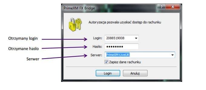 Forex demo logowanie