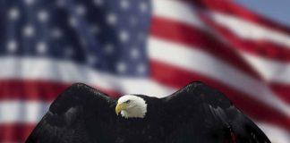 FED USA Stany Zjednoczone
