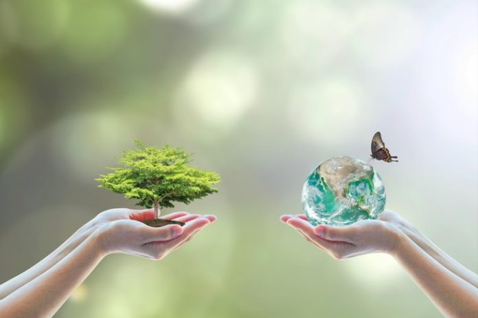 ekologia natura zdrowie